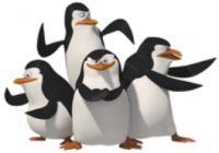 Pinguin 3.png